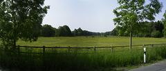 Wiesen in Sahrendorf [HFF]