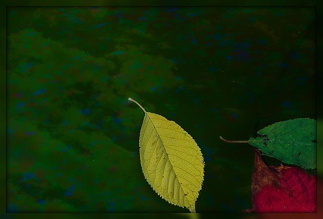 kleine Herbstwelt 12