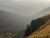 vertigo : in the Vosges at dawn