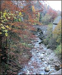 Saint-Laurent-du-Pont (38) Vallée du Guiers-Mort  14 octobre 2008.