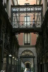 Passage Bacardi