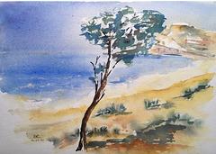 Les dunes : Agadir 1960 (après février)