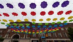 Exeter Umbrellas (2*PiP)