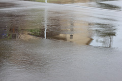 SHC31 puddle