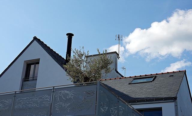 la fumée de nuages sur les toits,,