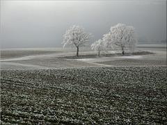 Der Winter verzieht sich langsam
