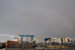 Rainbow over Mews Rd Harbour  (7)