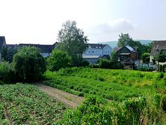 DE - Bad Bodendorf