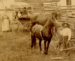 Horses, Cows, and Plows in Front of a Barn, Quarryville, Pa. (Detail on Left)