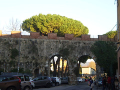 Arches on the old wall.