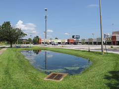 Retention pond of central Florida cellphone tower shopping center landscape.