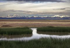 La Cordière des Andes - 2012
