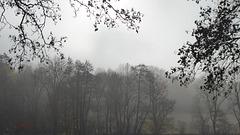 Morgens nebelverhangen in Eisenach