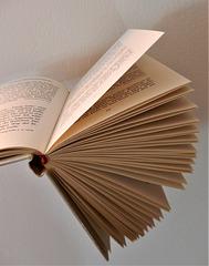 MM  BOOKS   1xPiP