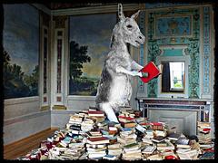 LIBRI [2] ... Ein Esel, der Bücher lesen kann, ist darum nicht gelehrt ...  (PiP)