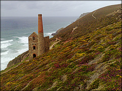Wheal Coates tin mine. Towanroath pumping engine-house ruin (but a well-preserved ruin!)