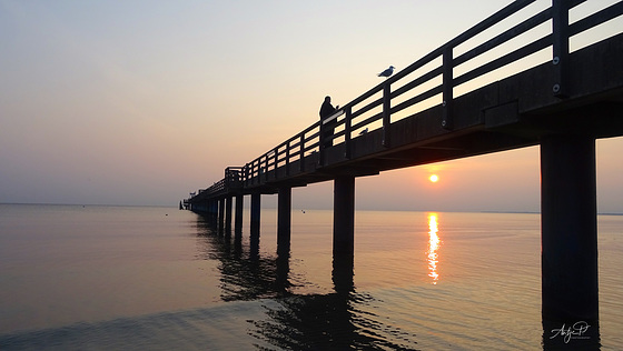sunrise lover