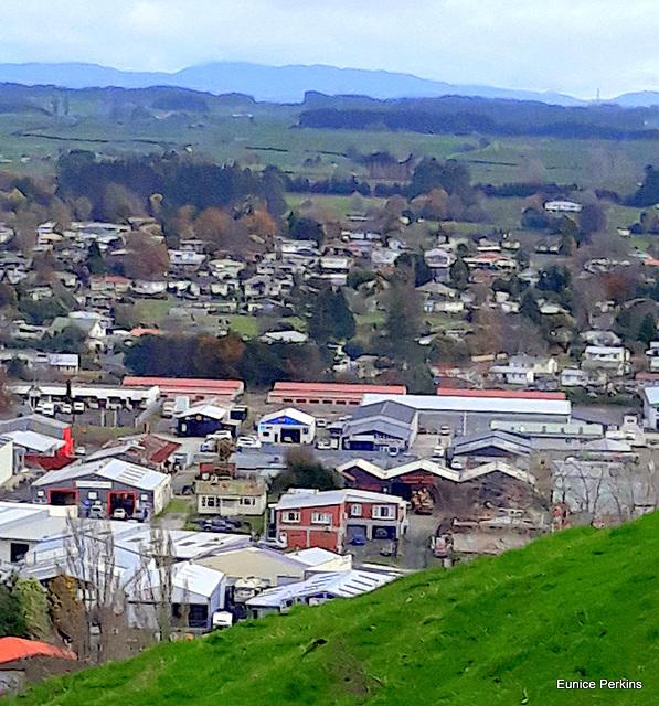 Rotorua From The Gondola