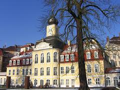 495 Das Gohliser Schloss in Leipzig