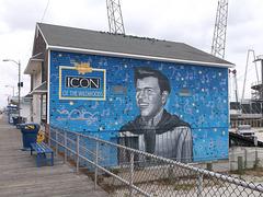 Pour se souvenir de Bobby Rydell
