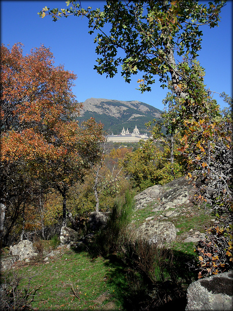 El Escorial from the Herreria Woods