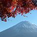Japon - Fuji 1