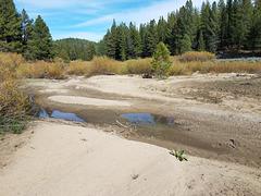 Last Chance Creek