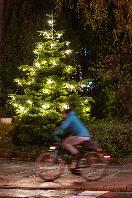 Cycling around the Christmas tree (29.11.2018)