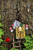 Red Rose, White Rosa and Wee Fairy Door