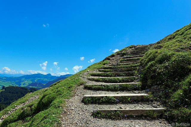 Wanderweg am Kronberg (© Buelipix)