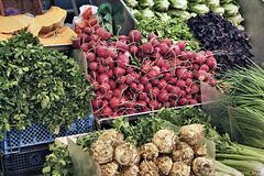 Radishes – Carmel Market, Tel Aviv, Israel