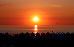 Sunset Cayeux sur Mer