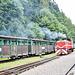 Bieszczadzka Forest Railway