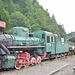 Bieszczadzka Forest Railway Lok-Kp41257