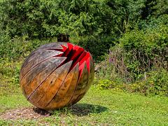 Organic Form for a Garden