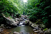 Manns Creek