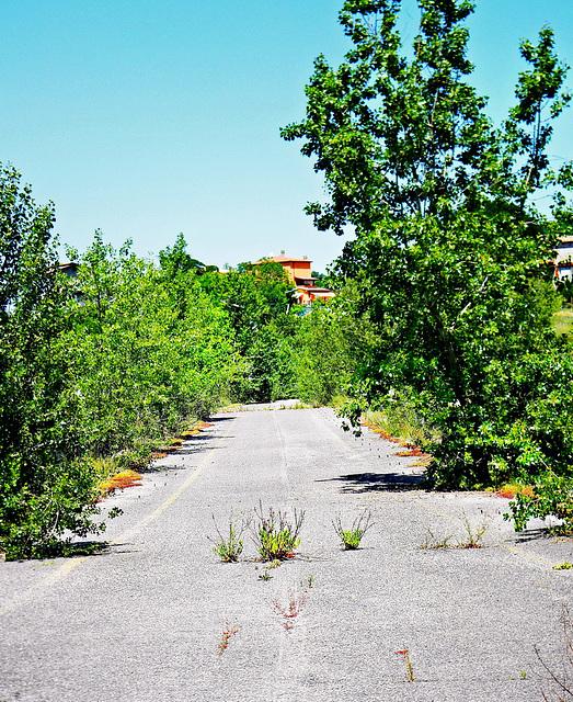 """Maiolo (RN), Loc: S. Maria in Antico. Ponte in disuso sul torrente Prena, strada SP 258 (ex SS 258).  -  """"Cassandra Crossing"""" bridge on Prena river. (ex National Route N° 258)"""