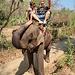 MaeTaeng Elephant Park - Tajlandia