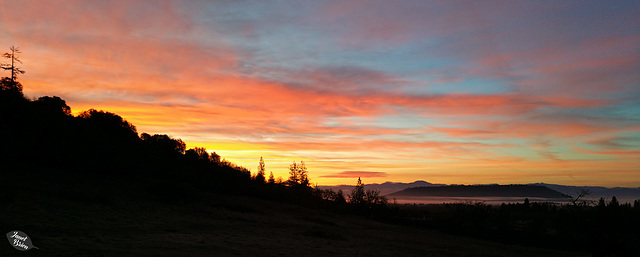 Pictures for Pam, Day 31: Sunrise + 2 insets