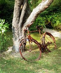Qui a oublié son vélo ?