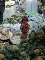 La petite fille aux ananas...