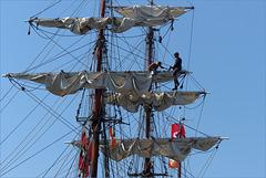 An Impression of Sail Amsterdam, 2015... 5