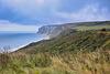 Towards Bempton cliffs
