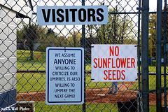 NO --->  Sunflower Seeds