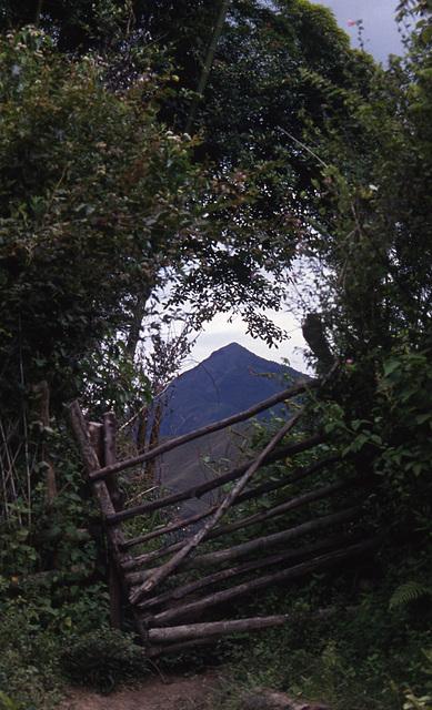 Columbia, Ecuador 1994