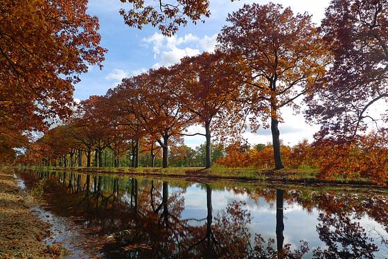 Nederland - Oosterhuizen/Lieren