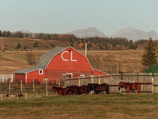 CL Ranches, Alberta