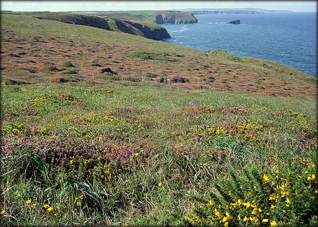 Cornwall,  a long coastal view.