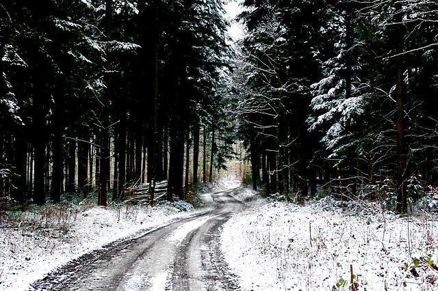 Winterwanderung - Winter hike
