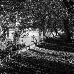 Mortlake afternoon (M9)
